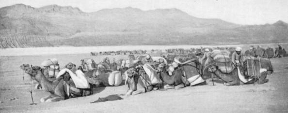 Persia. La caravana de Landor y otras - Foto por A.H. Savage Landor