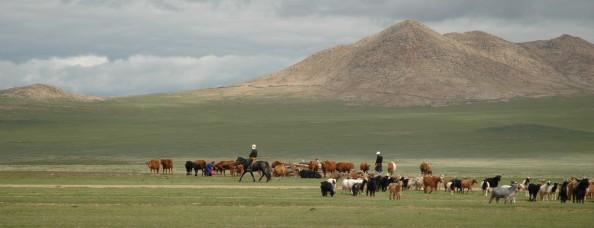 Mongolia, 2005 - Nómadas con su ganado - Foto por Mi Lawrence