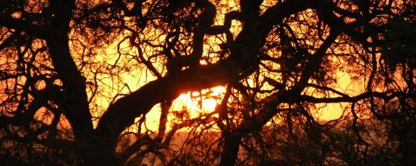 Puesta de sol africana - Foto por Mi Lawrence